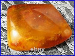 Antique Baltic Natural Amber Pendant 23 G With Natural Tree Crust Stamp Rare